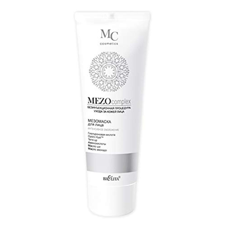テロリストリングダースMezo complex   Mezo MASK for the face   Non-injection facial skin care procedure   Hyaluronic acid   Optim Hyal...
