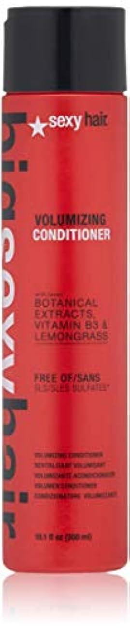 無謀サンプルローラーセクシーヘアコンセプト Big Sexy Hair Sulfate-Free Volumizing Conditioner 300ml/10.1oz並行輸入品