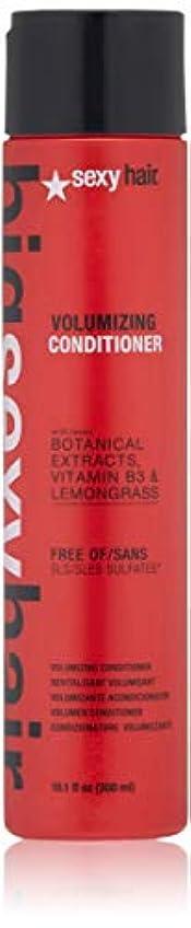クローン薄汚い集まるセクシーヘアコンセプト Big Sexy Hair Sulfate-Free Volumizing Conditioner 300ml/10.1oz並行輸入品