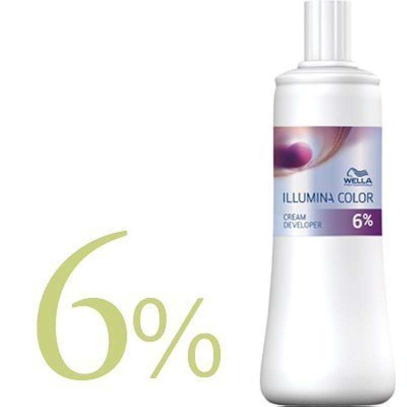 非難するとは異なりフローウエラ イルミナカラー クリームディベロッパー 2剤 1000ml 【WELLA】(6%)
