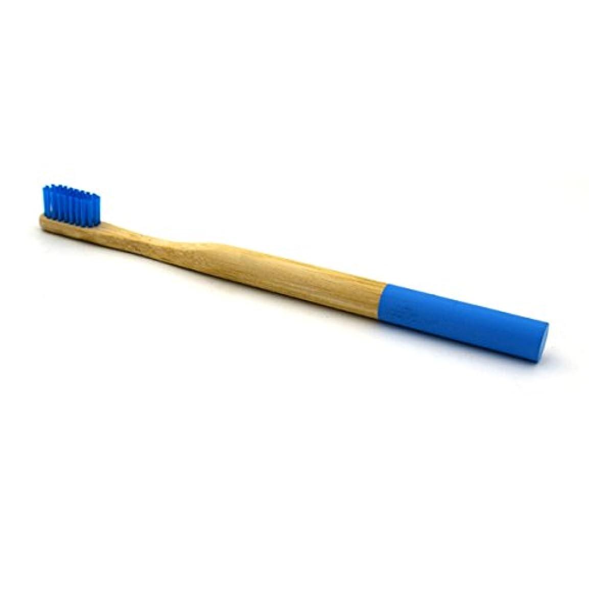 フリッパー優れました分割HEALLILY竹製の歯ブラシ天然木炭竹製の歯ブラシ大人用柔らかい剛毛の歯ブラシ(ブルー)