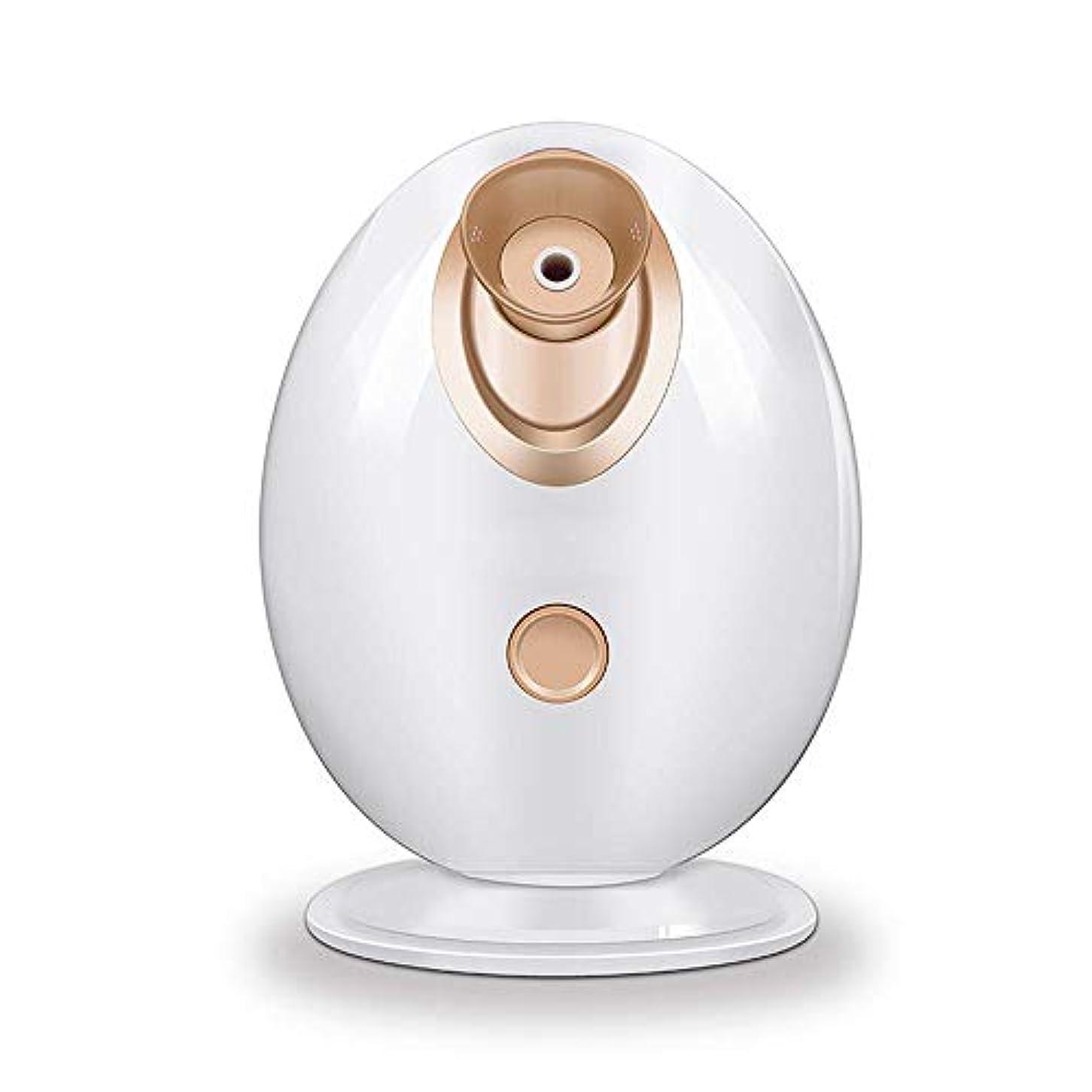 キモい性能ボックスYalztc-zyq16 家の美容院イオン蒸気の表面水和の美の器械のスプレー機械表面水和の器械のイオンスプレーのメートルの皮の若返り、熱スプレーの美の器械 (Color : Gold)