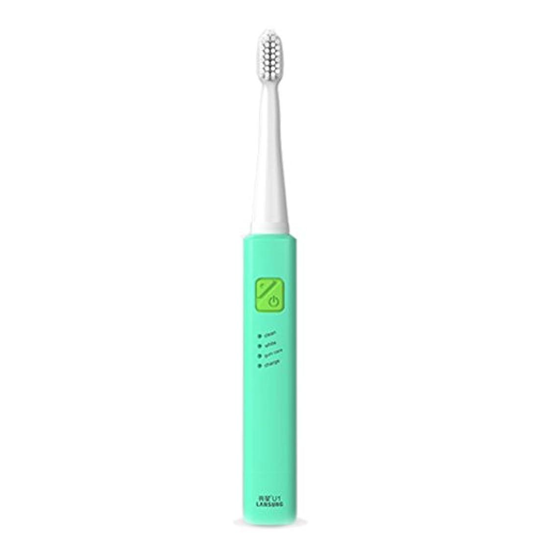 負荷偶然塩電子歯ブラシ 超音波ロータリー ノンスリップ防水歯ブラシ 歯科口腔衛生