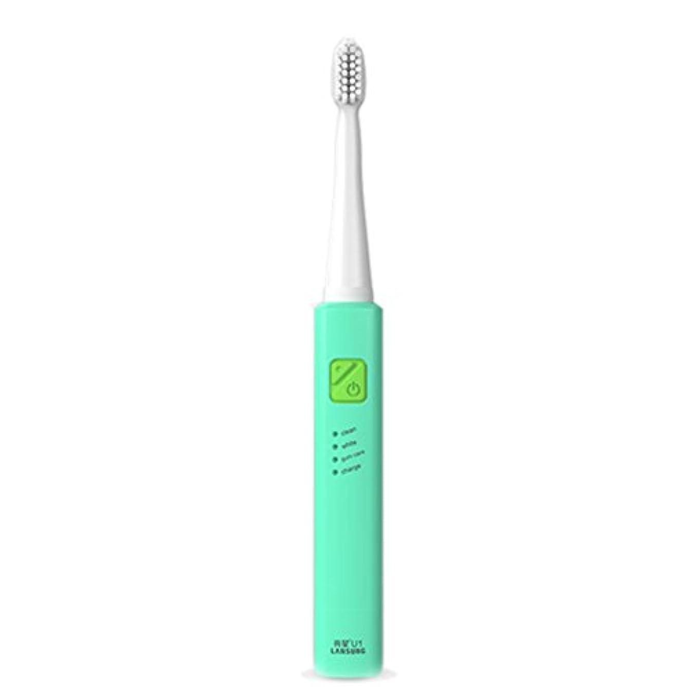 植物学聴く評議会電子歯ブラシ 超音波ロータリー ノンスリップ防水歯ブラシ 歯科口腔衛生