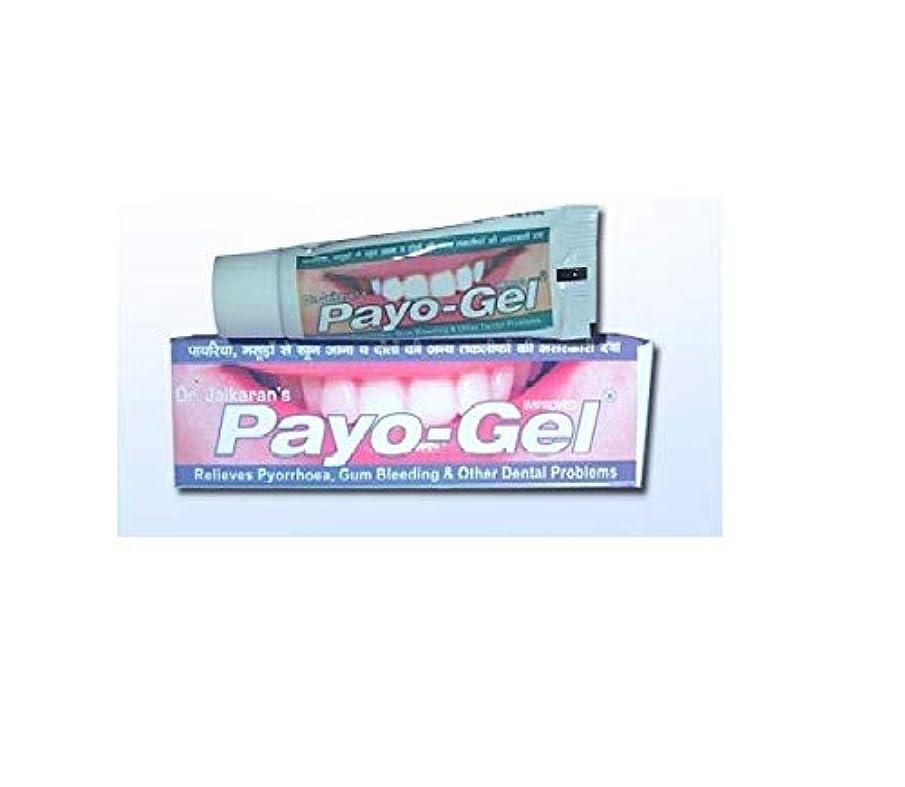 麻痺タフワームHerbal Payogel 20 grams Made with natural herbs for relief from bleeding gums Pyorrhea, ハーブ 歯茎の出血を防ぐための天然ハーブで作られています