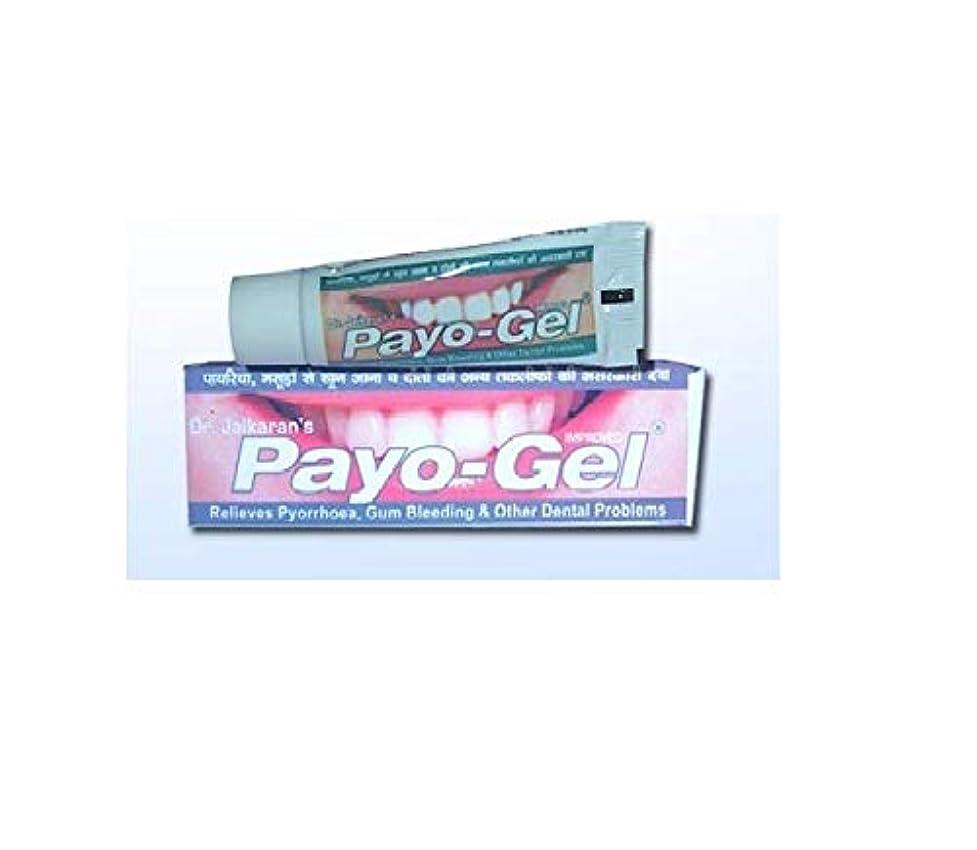 コンパス商業の名門Herbal Payogel 20 grams Made with natural herbs for relief from bleeding gums Pyorrhea, ハーブ 歯茎の出血を防ぐための天然ハーブで作られています