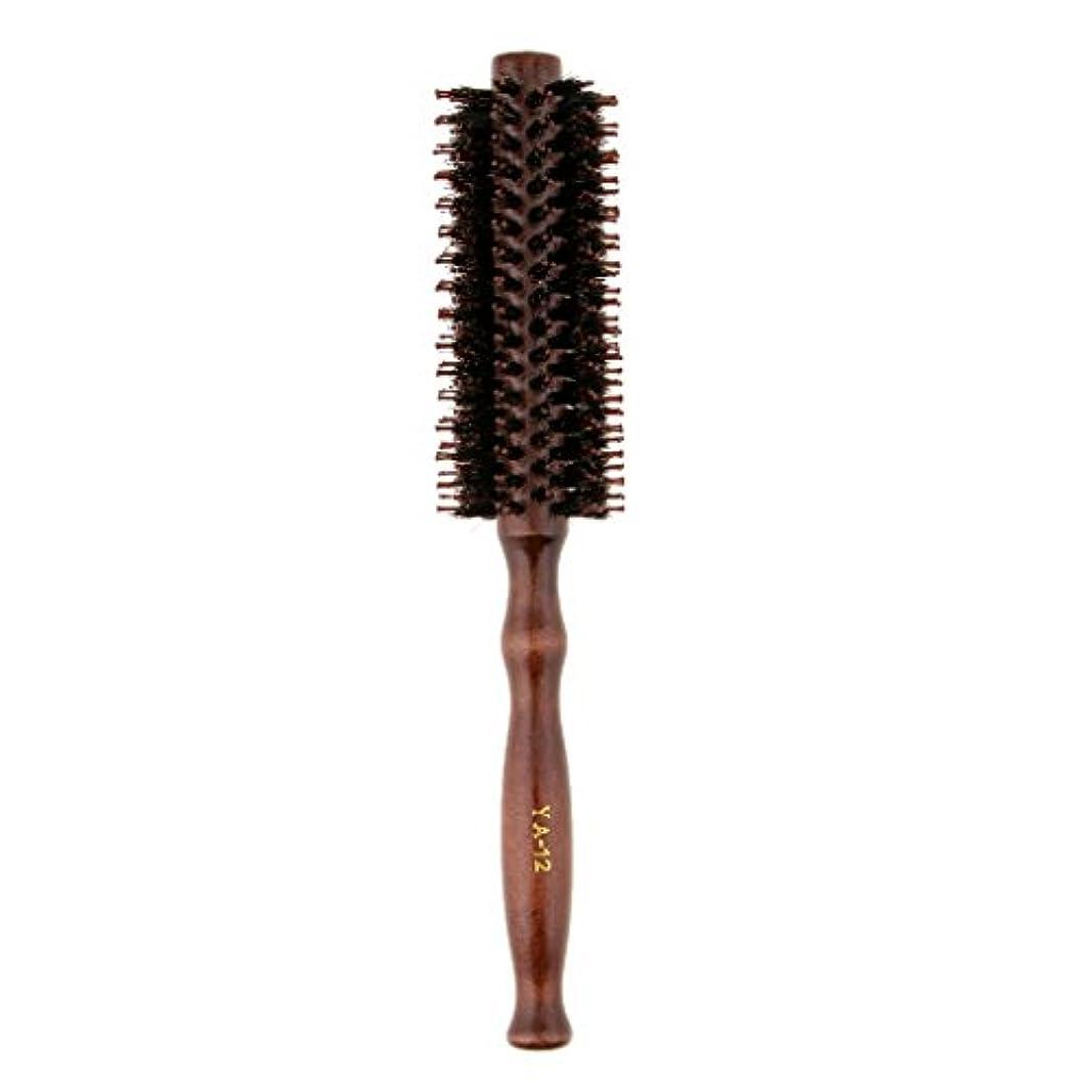 不誠実市区町村空のFenteer ロールブラシ ヘアブラシ 木製ハンドル 滑らか 仕上げ 速乾性 軽量 理髪 美容 カール 2タイプ選べる - #2