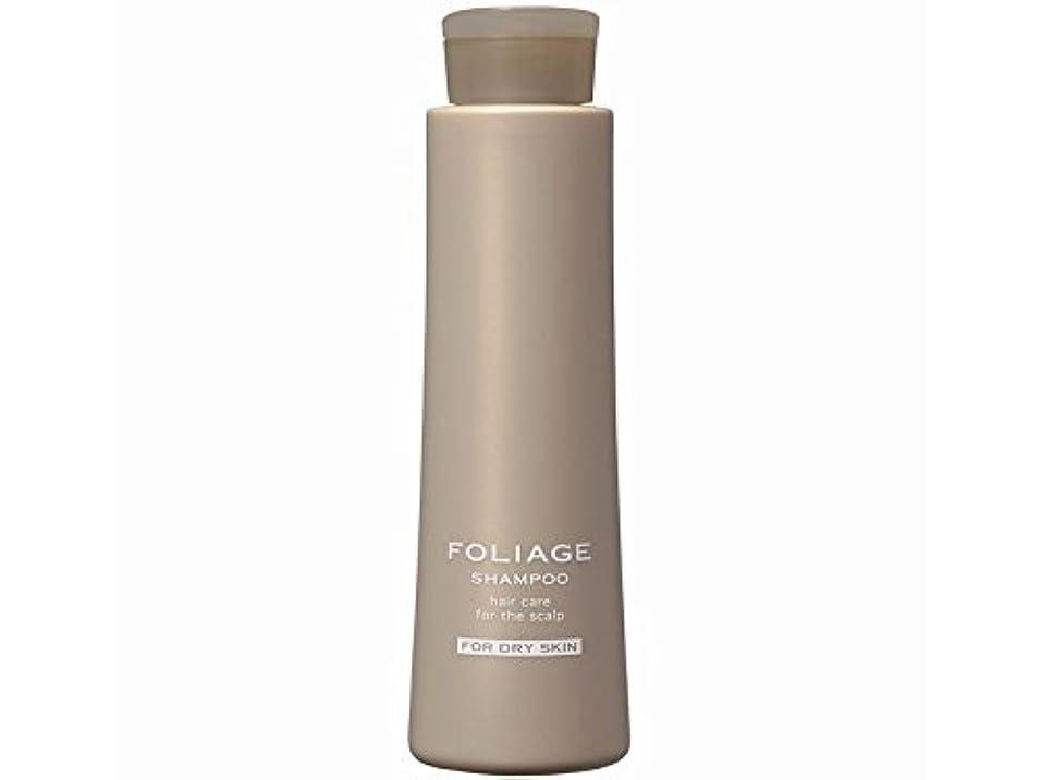 効率的に続ける香ばしい中野製薬 フォリッジ シャンプー ドライスキン用 300ml
