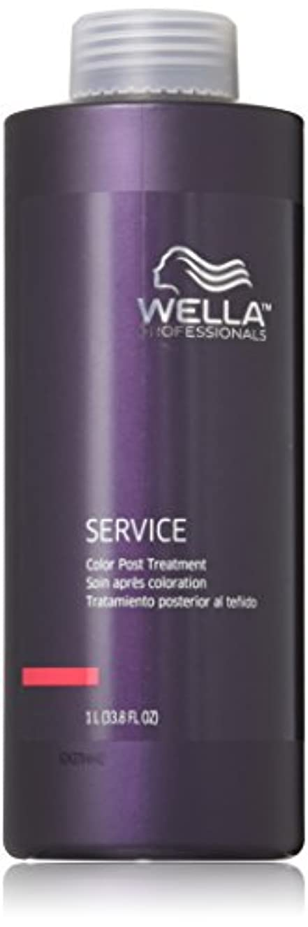 隔離するシプリー打ち負かすWella Professionals Post Treatment Service Color, 33.8 Ounce by Wella