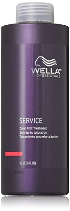欺くアクロバット丘Wella Professionals Post Treatment Service Color, 33.8 Ounce by Wella