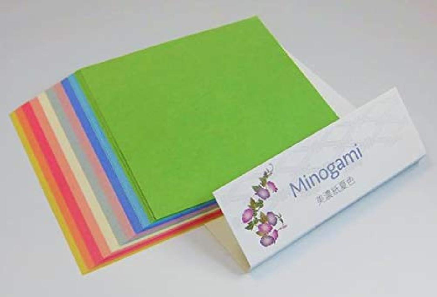 刺繍最愛の知り合いになるMinogami 美濃紙 夏色 MP-M2