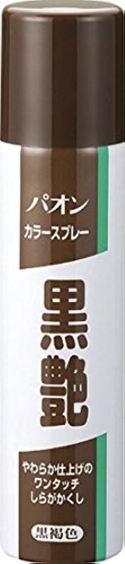 側溝ファッション排泄するパオン カラースプレー黒艶 黒褐色 85g