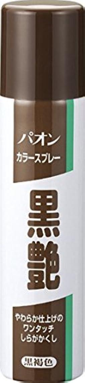 版十二歩行者パオン カラースプレー黒艶 黒褐色 85g