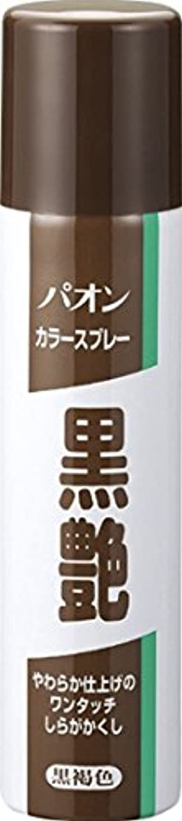 大理石愚か定刻パオン カラースプレー黒艶 黒褐色 85g