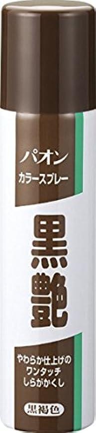 糸アッティカス木パオン カラースプレー黒艶 黒褐色 85g