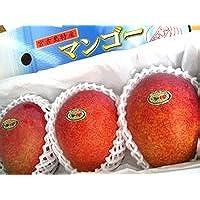【優品】 奇跡のマンゴー 砂川重信さんの有機栽培無農薬完熟マンゴー1kg(2~3玉入)【送料込】