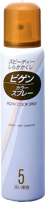 位置する没頭する隔離するホーユー ビゲン カラースプレー 5 (深い栗色) 82g(125mL) ×6個