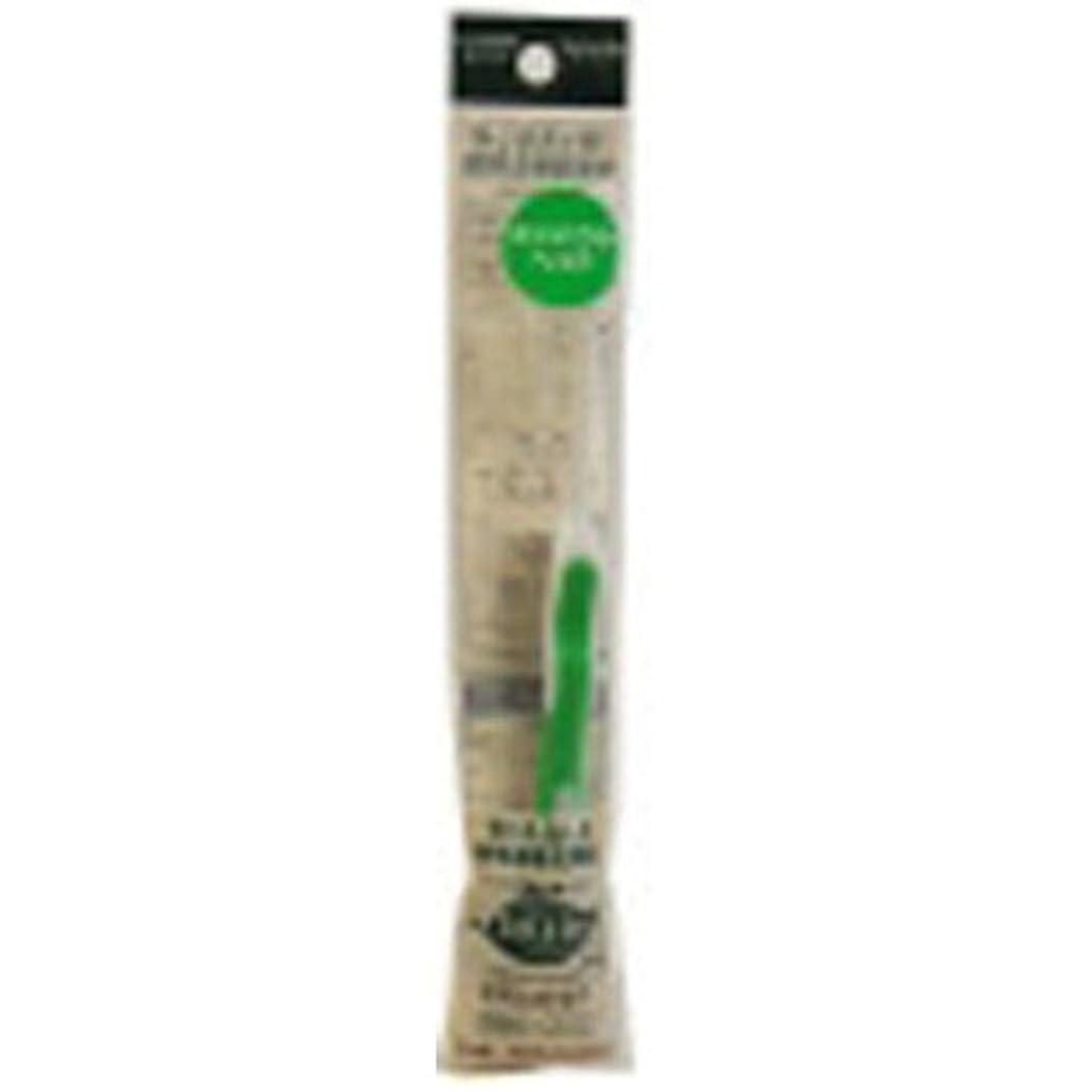 優勢木曜日スーツサレド ヘッド交換式歯ブラシ お試しセット コンパクトヘッド グリーン