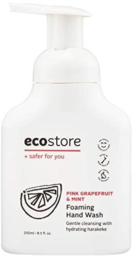 暗いボトル敷居ecostore(エコストア) ハンドウォッシュ 【ピンクグレープフルーツ&ミント】 250ml 泡タイプ