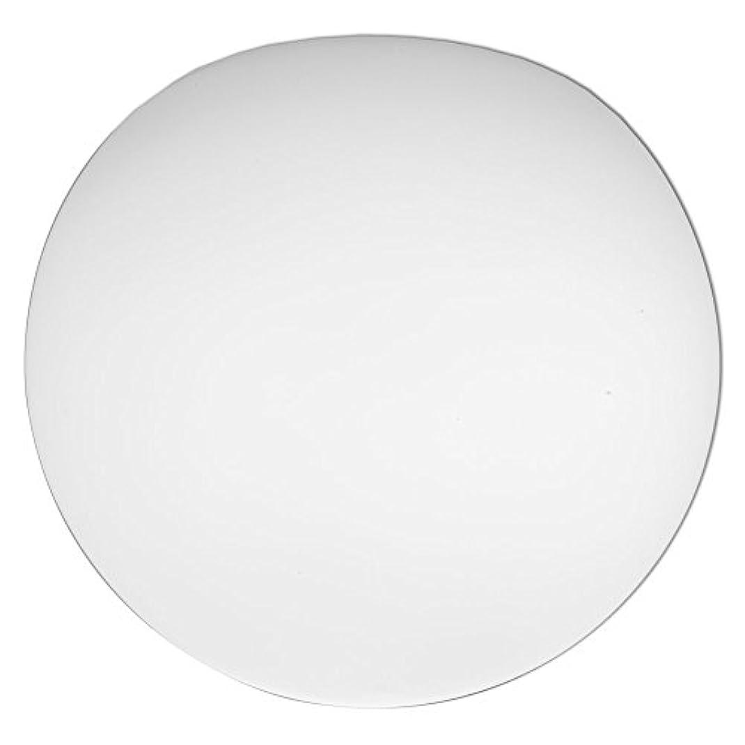 メトロポリタン挨拶するセミナーLithonia Lighting DGLOB6 M12 Replacement Glass Diffuser White [並行輸入品]