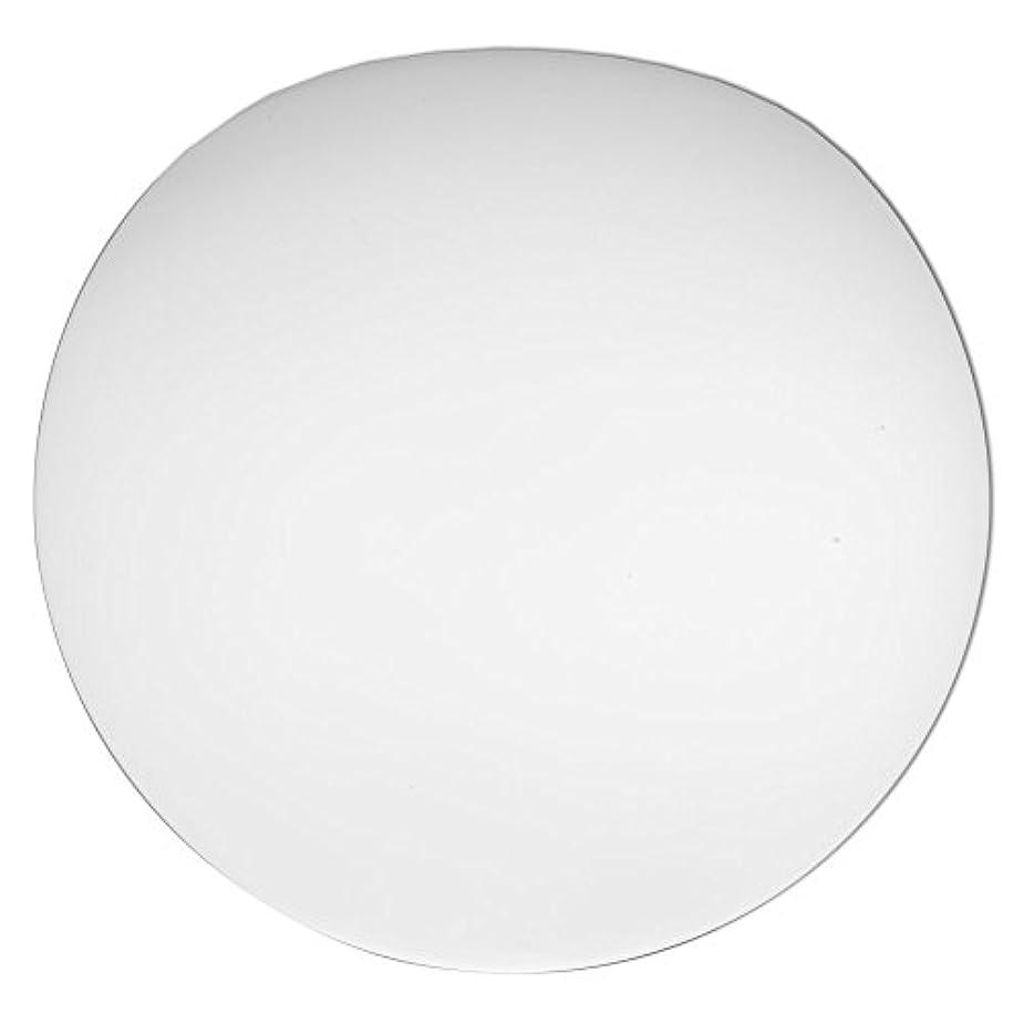 回る顎トランスミッションLithonia Lighting DGLOB6 M12 Replacement Glass Diffuser White [並行輸入品]