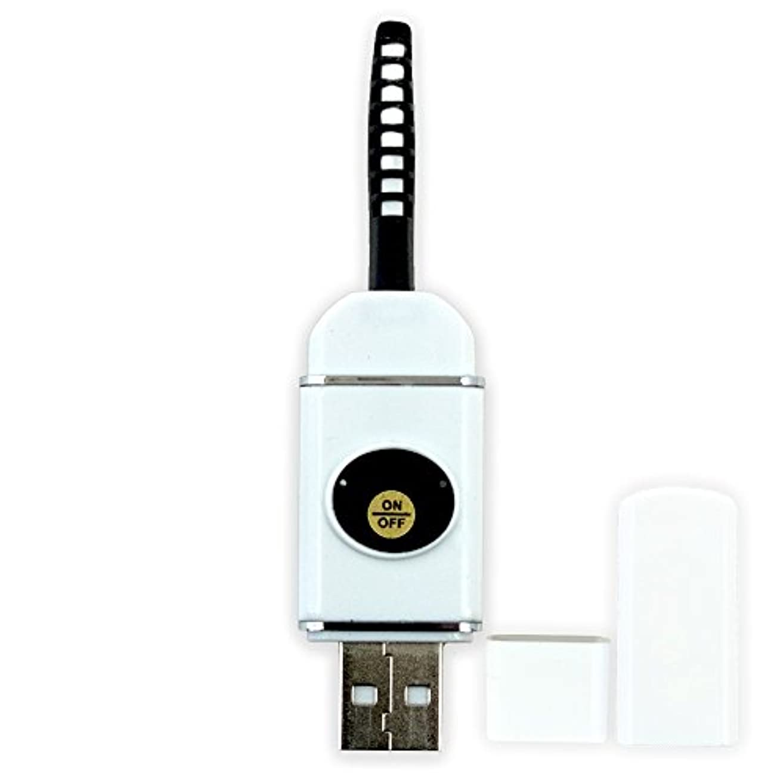 遅らせる殺人者前に【即納】USB充電式 まつ毛 カーラー ホット ビューラー