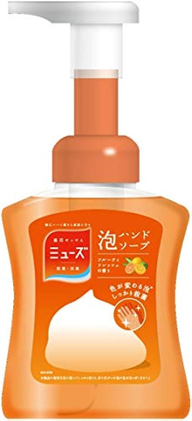 【医薬部外品】ミューズ 泡ハンドソープ フルーティフレッシュ 本体 250ml