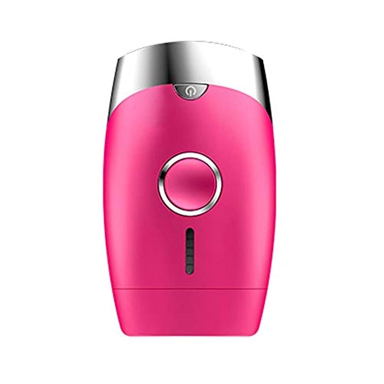 空のドロップ戻るダパイ ピンク、5スピード調整、インテリジェント家庭用痛みのない凝固点ヘアリムーバー、シングルフラッシュ/連続フラッシュ、サイズ13.9 X 8.3 X 4.8 Cm U546 (Color : Pink)