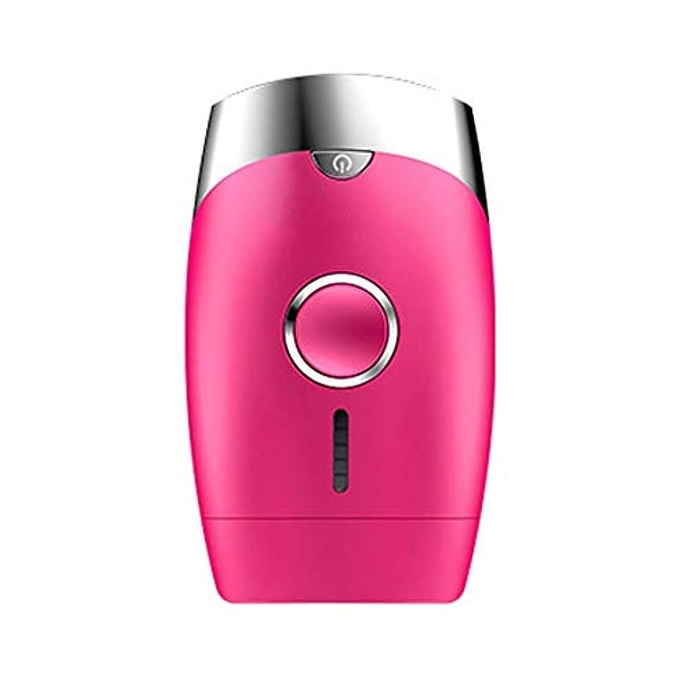 約設定リマーク表示ダパイ ピンク、5スピード調整、インテリジェント家庭用痛みのない凝固点ヘアリムーバー、シングルフラッシュ/連続フラッシュ、サイズ13.9 X 8.3 X 4.8 Cm U546 (Color : Pink)