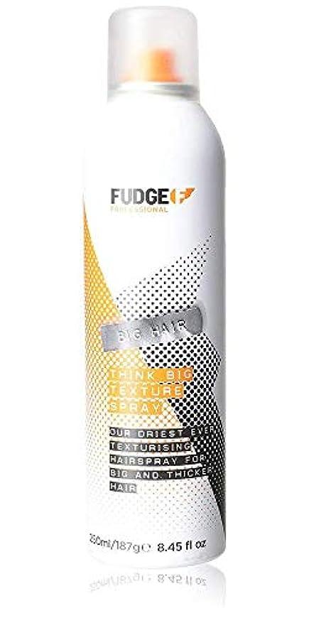 送るアーティファクトちなみにFudge Big Hair Think Big Texture Spray 250 ml