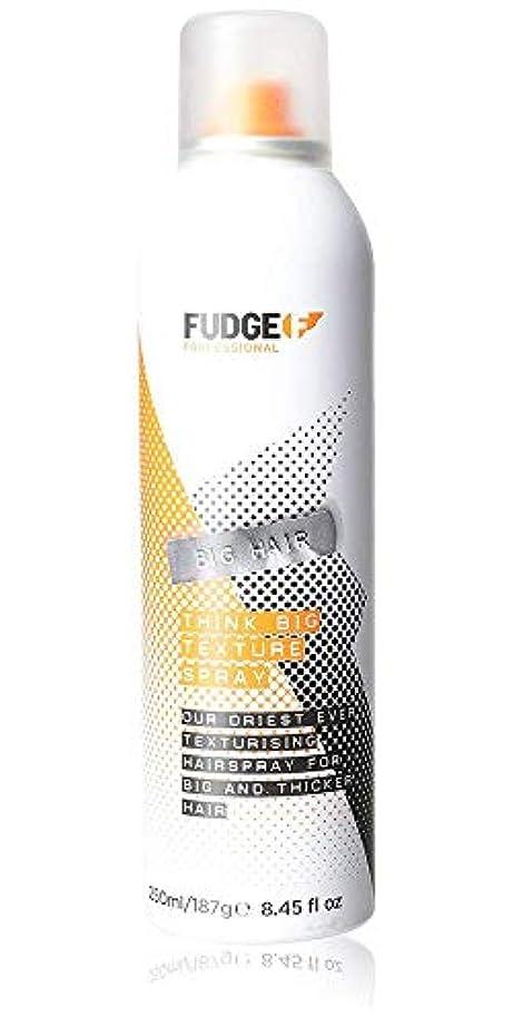 雨上に築きます教えFudge Big Hair Think Big Texture Spray 250 ml