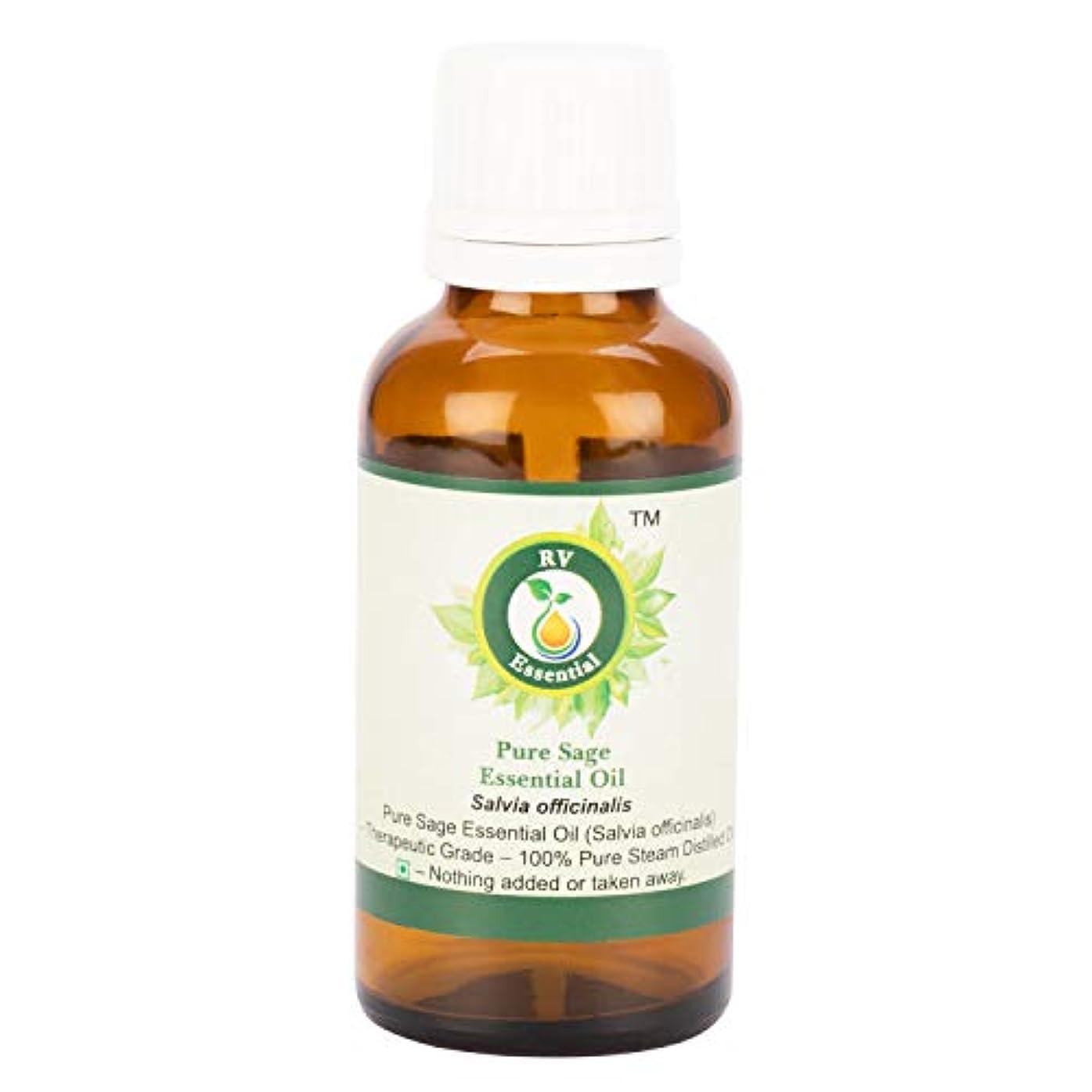 ペルー聴覚バスケットボールピュアセージエッセンシャルオイル100ml (3.38oz)- Salvia Officinalis (100%純粋&天然スチームDistilled) Pure Sage Essential Oil