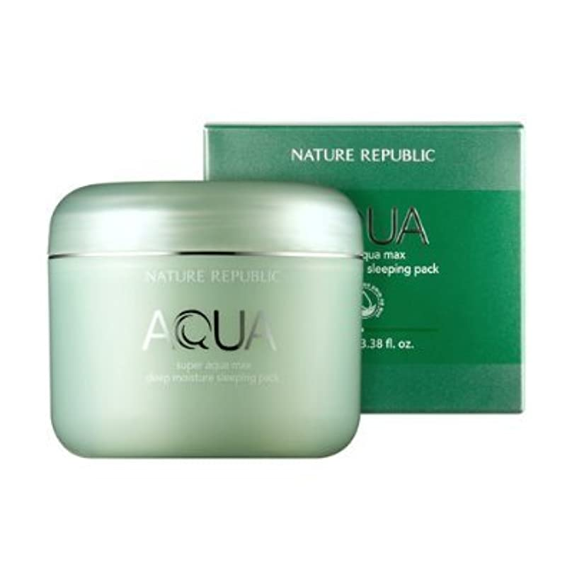 下向き先行するヒギンズNature Republic Super Aqua Max Deep Moisture sleeping Pack 100ml