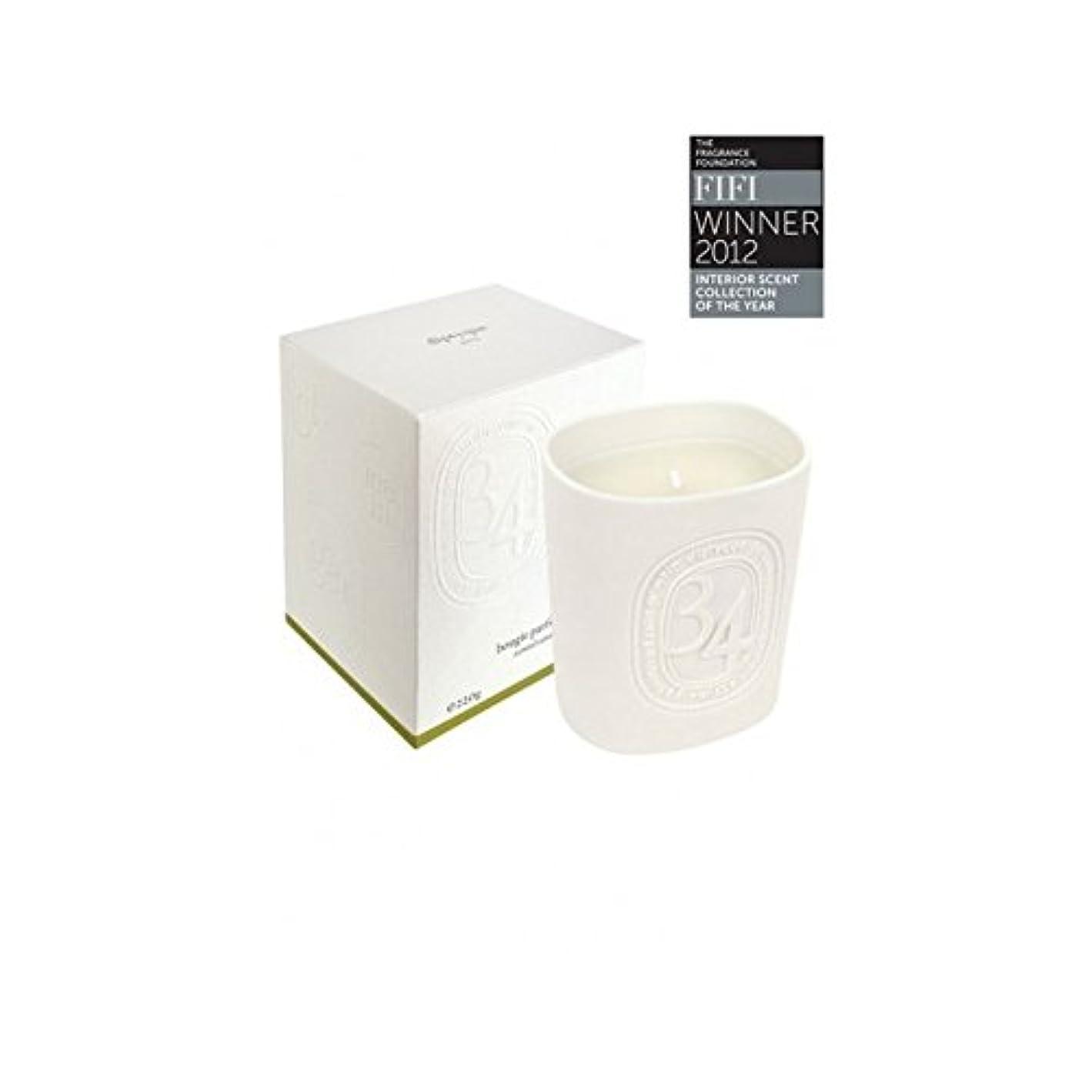 領事館予定ペパーミントDiptyque Collection 34 Boulevard Saint Germain Candle 220g (Pack of 2) - Diptyqueコレクション34大通りサンジェルマンキャンドル220グラム...