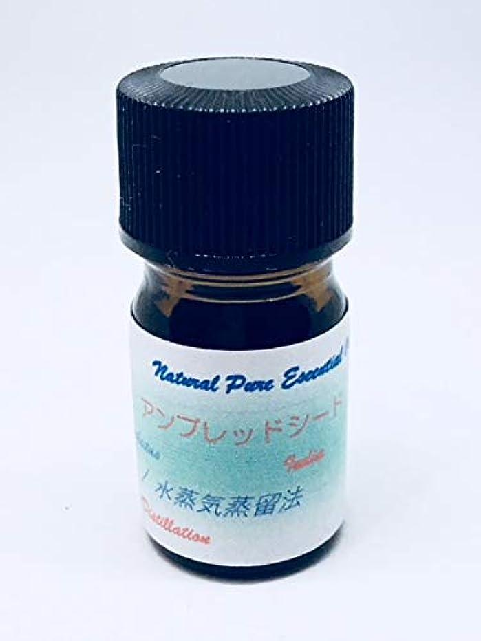 きゅうりデッドイサカアンブレッドシード(植物性ムスク)精油 3ml100%ピュアエッセンシャル