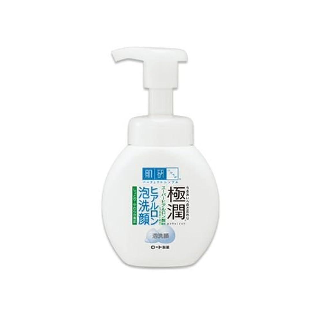 十見る手順肌研(ハダラボ)極潤ヒアルロン 泡洗顔 160ml