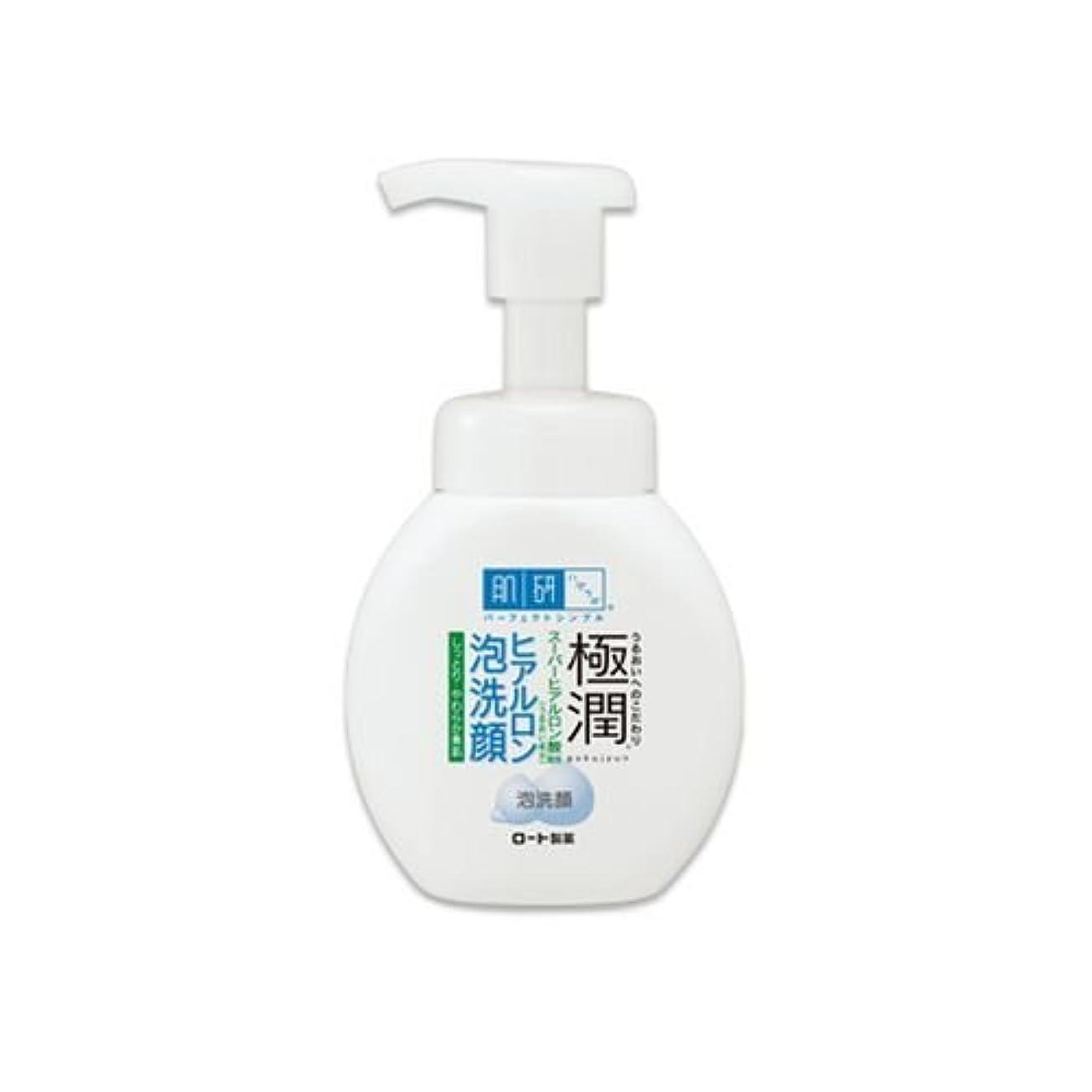 肌研(ハダラボ)極潤ヒアルロン 泡洗顔 160ml