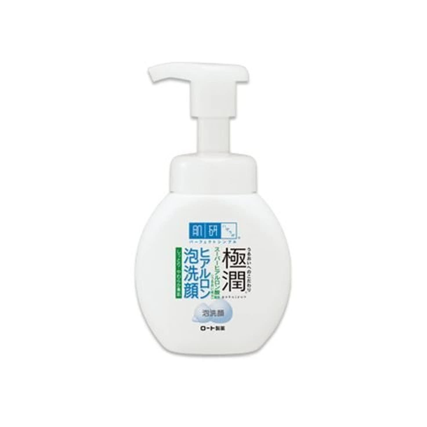 抽象化グラフ液体肌研(ハダラボ)極潤ヒアルロン 泡洗顔 160ml