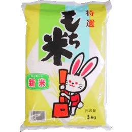 【精米】山形県産 白米 白米 もち米 ヒメノモチ 5kgx1...