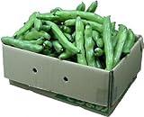 そら豆(おたふく豆)4kg箱 【国産】Lサイズ1本に約3玉入り [その他]