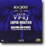 1/48 超時空要塞マクロス VF-1J 完全変形版 スーパーバルキリー マックス機