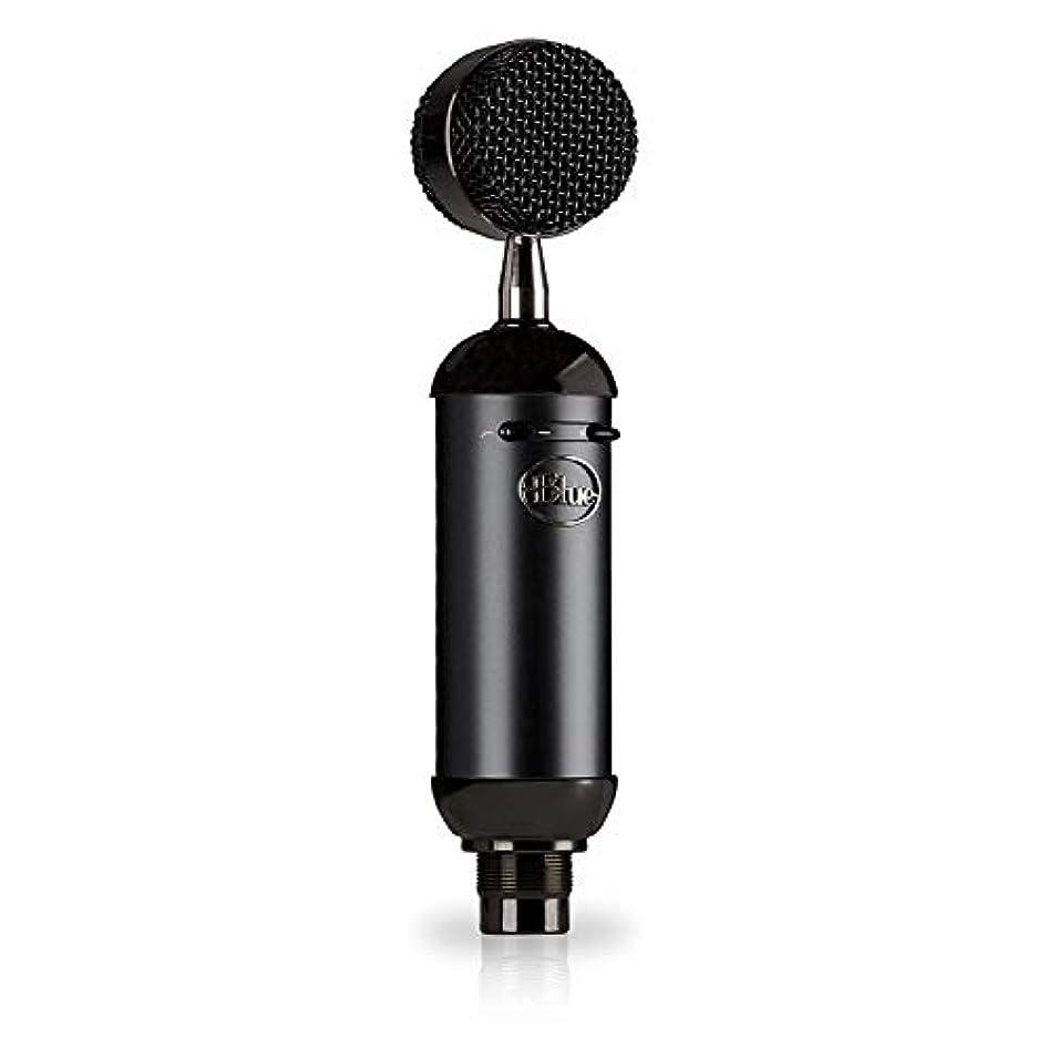 ばかげている全能人里離れたBlue Microphones Spark Blackout SL XLR Condenser Mic for Pro Recording and Streaming [並行輸入品]