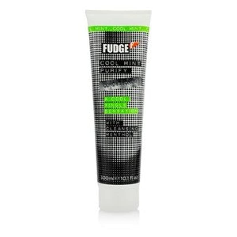 Fudge クール ミント ピュリファイ コンディショナー(A Cool Tingle Sensation) 300ml/10.1oz [並行輸入品]