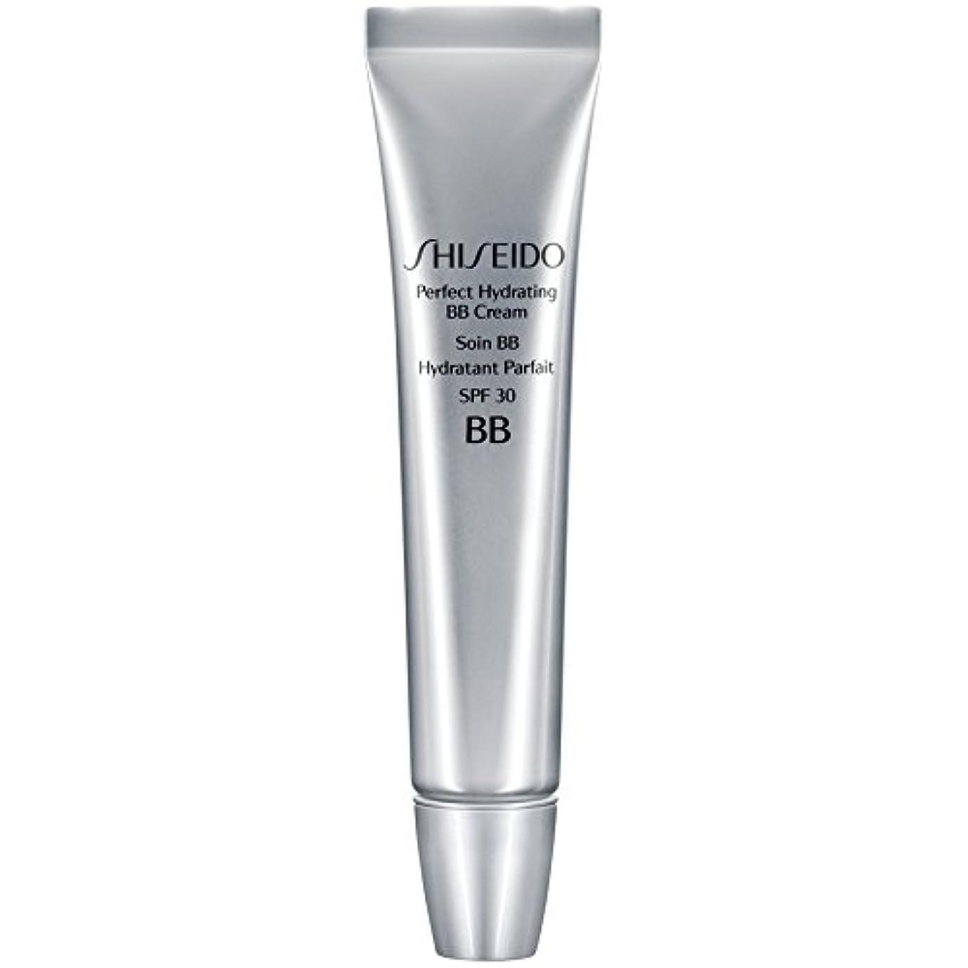 甲虫だらしない明日[Shiseido ] 資生堂完璧な水和BbクリームSpf 30 30ミリリットル媒体 - Shiseido Perfect Hydrating BB Cream SPF 30 30ml Medium [並行輸入品]