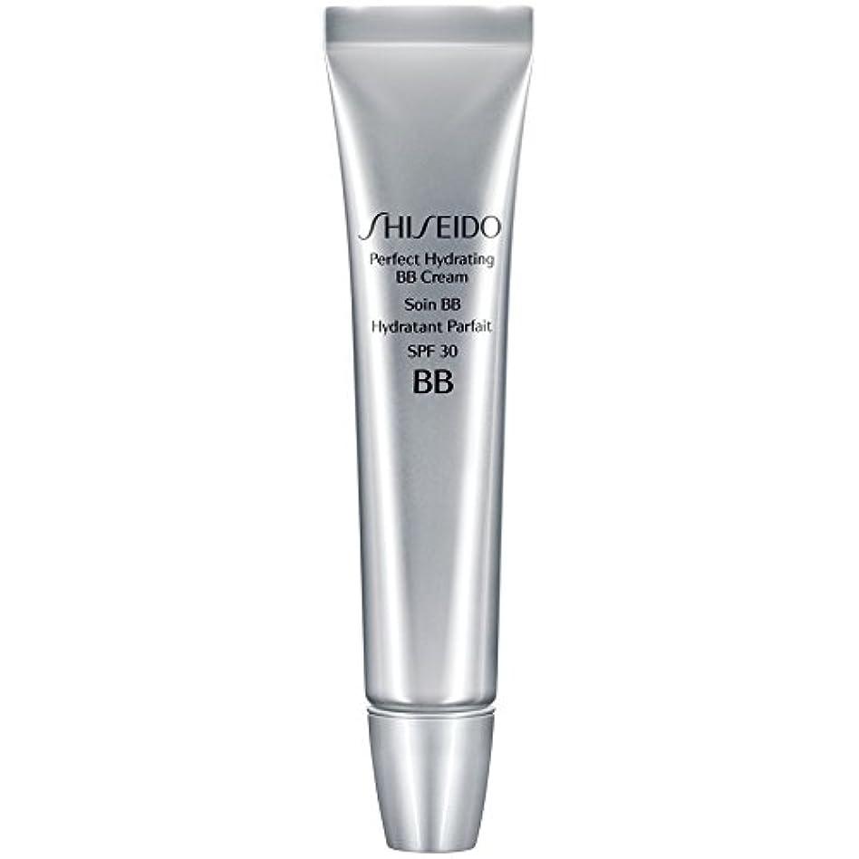 海峡混雑再編成する[Shiseido ] 資生堂完璧な水和BbクリームSpf 30 30ミリリットル媒体 - Shiseido Perfect Hydrating BB Cream SPF 30 30ml Medium [並行輸入品]