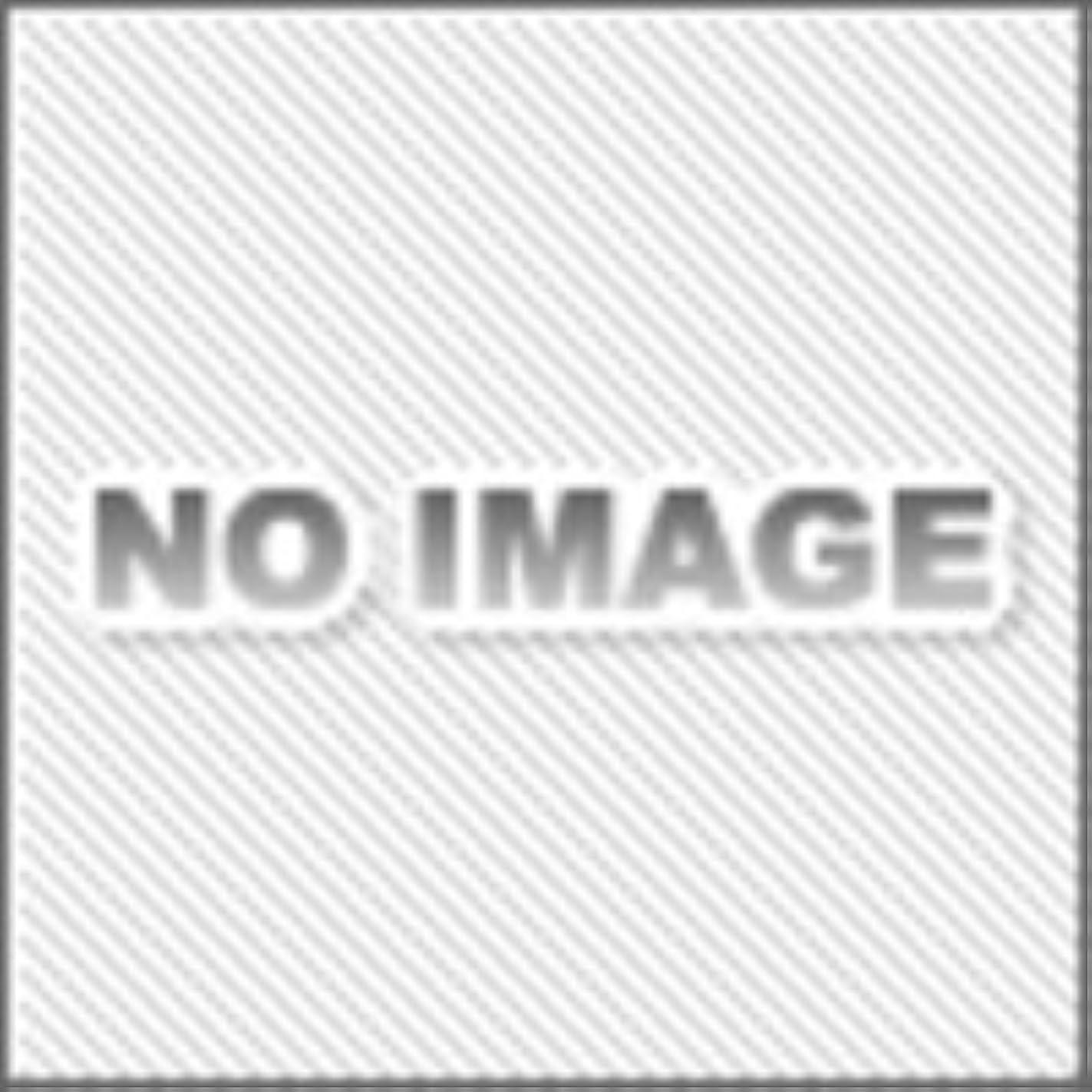 インカ帝国言うピラミッドデンソーウェーブ BA11-RKU用RS232C充電器組込みケーブル CBBA-RS2000/9-1