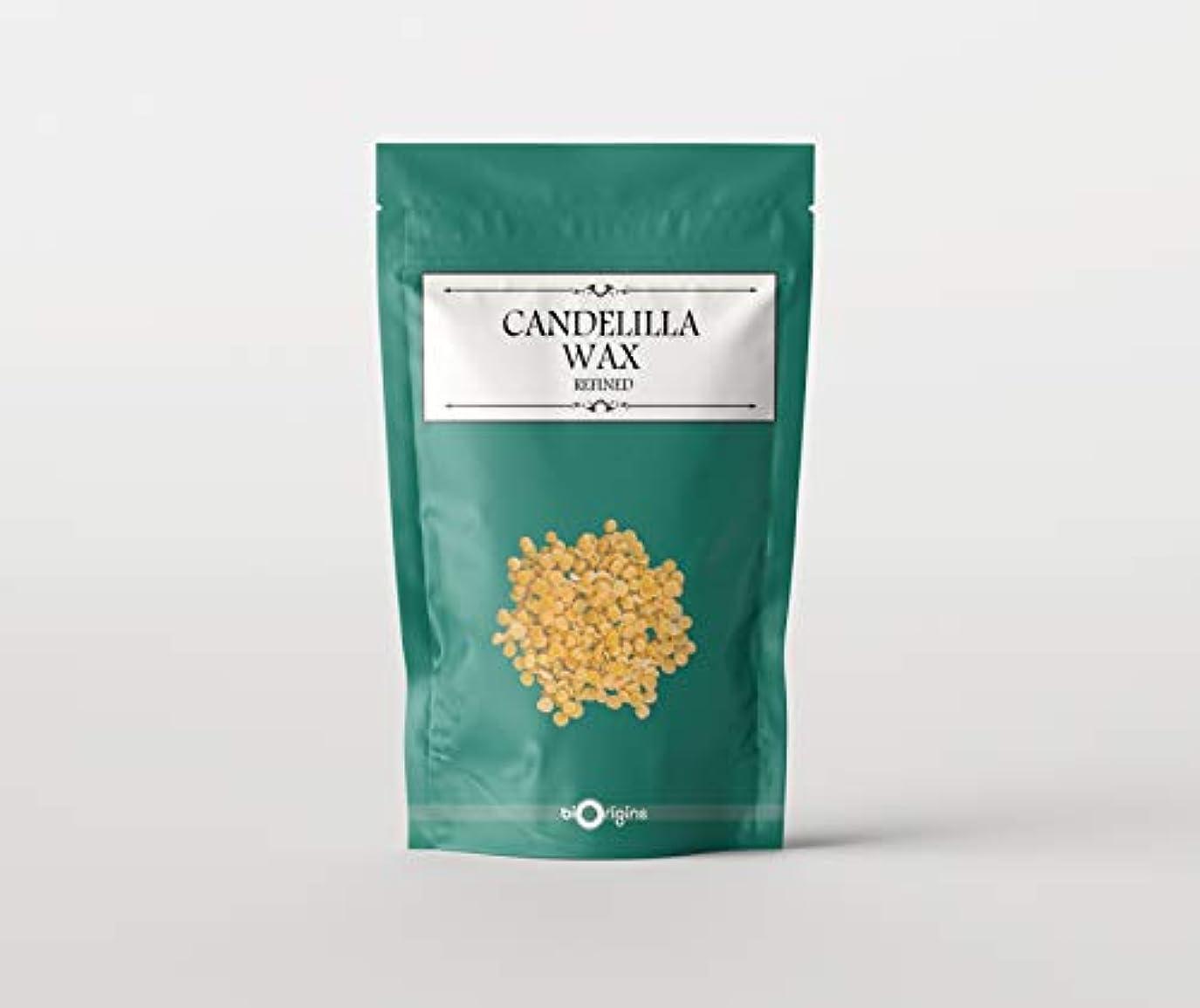 調査代表して合理化Candelilla Wax 1Kg