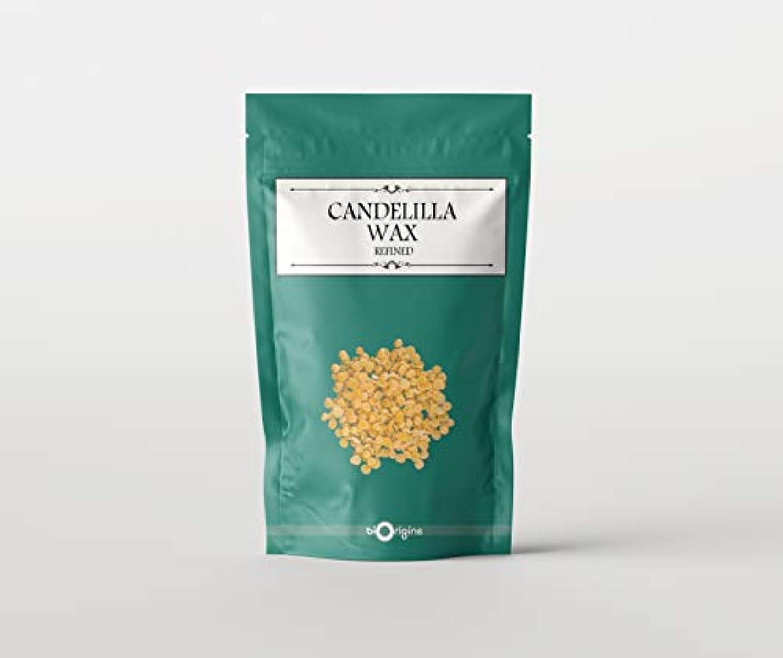 適性スムーズに風景Candelilla Wax 1Kg