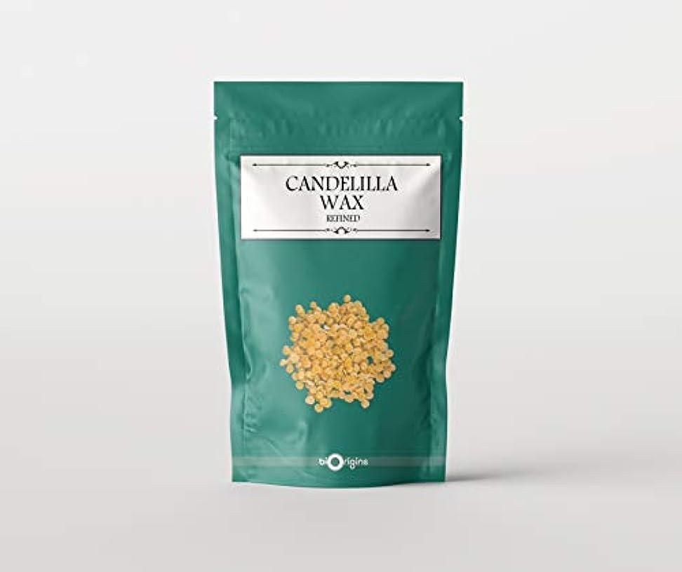 ポインタ先例便宜Candelilla Wax 1Kg