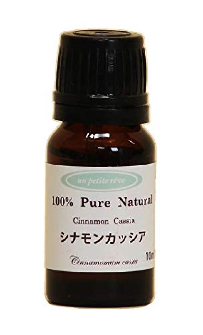 びんメドレーよく話されるシナモンカッシア 10ml 100%天然アロマエッセンシャルオイル(精油)